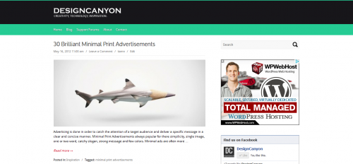 10_Canyon – Free WordPress Theme