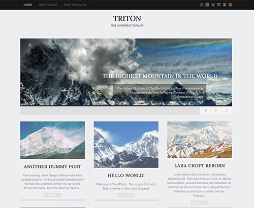 16_Triton Lite