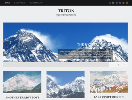 28_Triton Lite