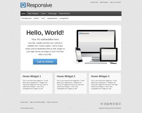 2_Responsive Theme