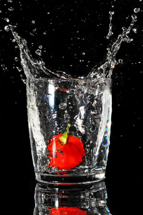 4_Habanero Splash