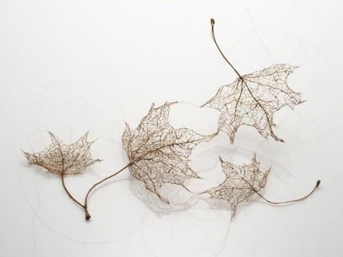 3_Human Hair Leaves
