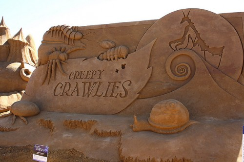 4_Creepy Crawlies