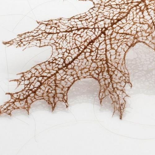 5_Human Hair Leaves