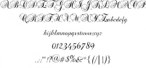 17_Precious Font
