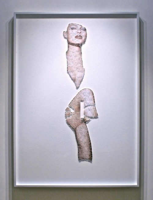 5_Skin Collages by David Adey