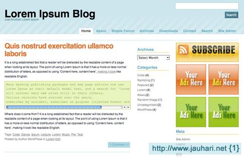 12_WordPress Theme - Padangan
