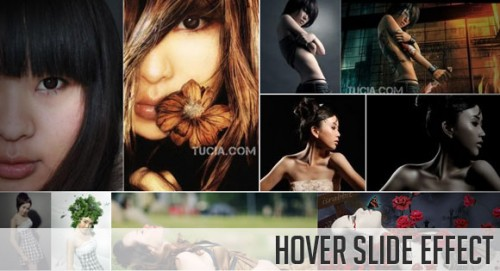 16_Hover Slide Effect with jQuery