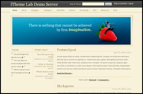 17_WP Imagination – Free WordPress Theme