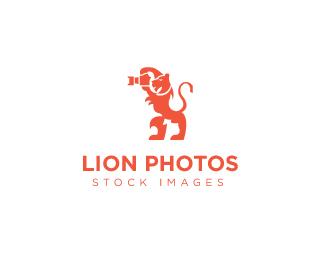 42_Lion Photos
