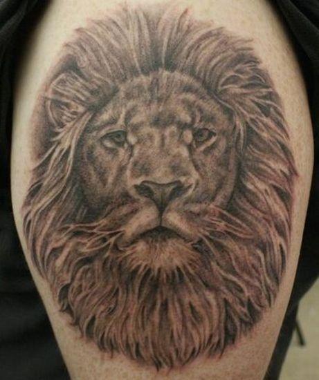 9_Lion