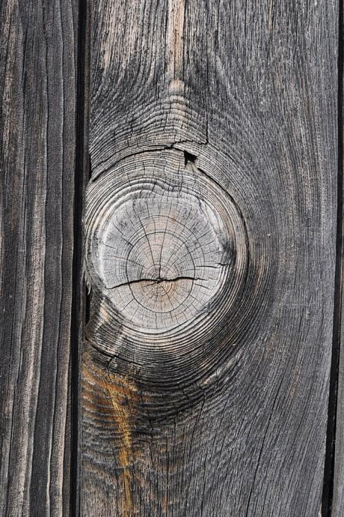 15_Wood Texture