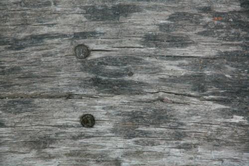 16_Wood Texture 06