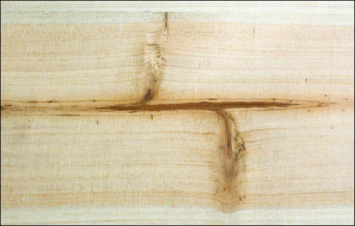 21_Texture - Wood Panel 2