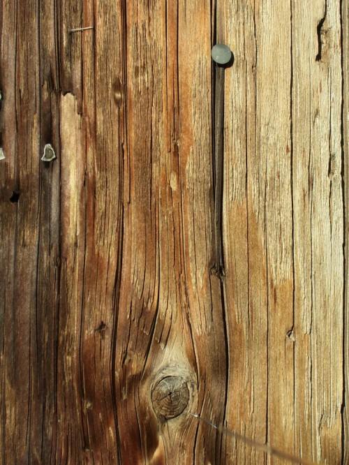 38_Wood Texture Stock