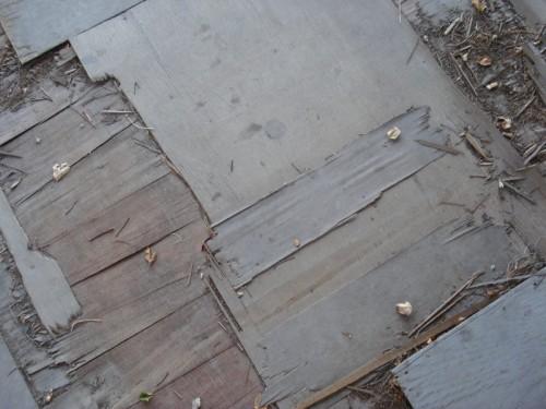 5_Wood Floor Texture