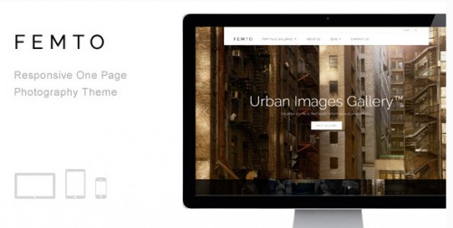 Femto - Responsive One Page Photography Theme