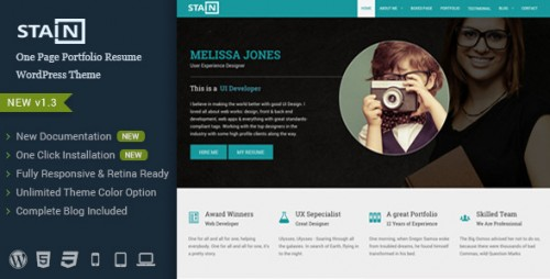 Stain - One Page Portfolio Resume WordPress Theme