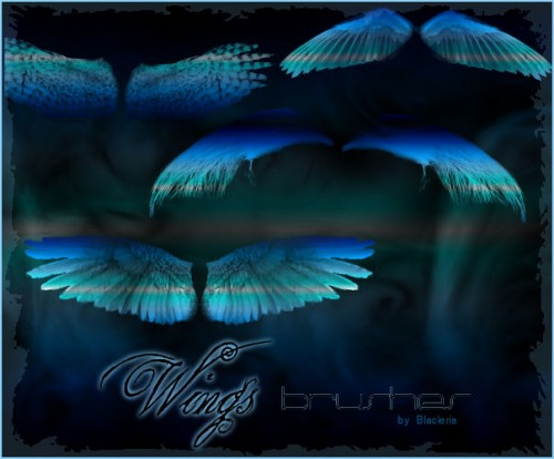 31_Wings Brushes Gimp