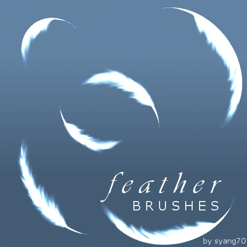 32_Feather Brushes