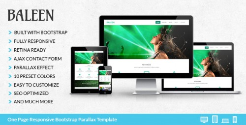 Baleen – Bootstrap One Page Parallax Template