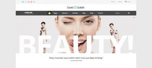 David & Goliath - Business and Portfolio Theme