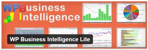 WP Business Intelligence Lite