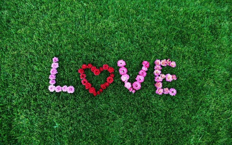Art Love Flowers Wallpaper