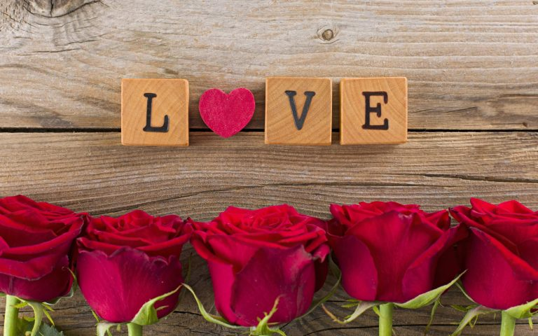 Beautiful Love Art Flowers Wallpaper